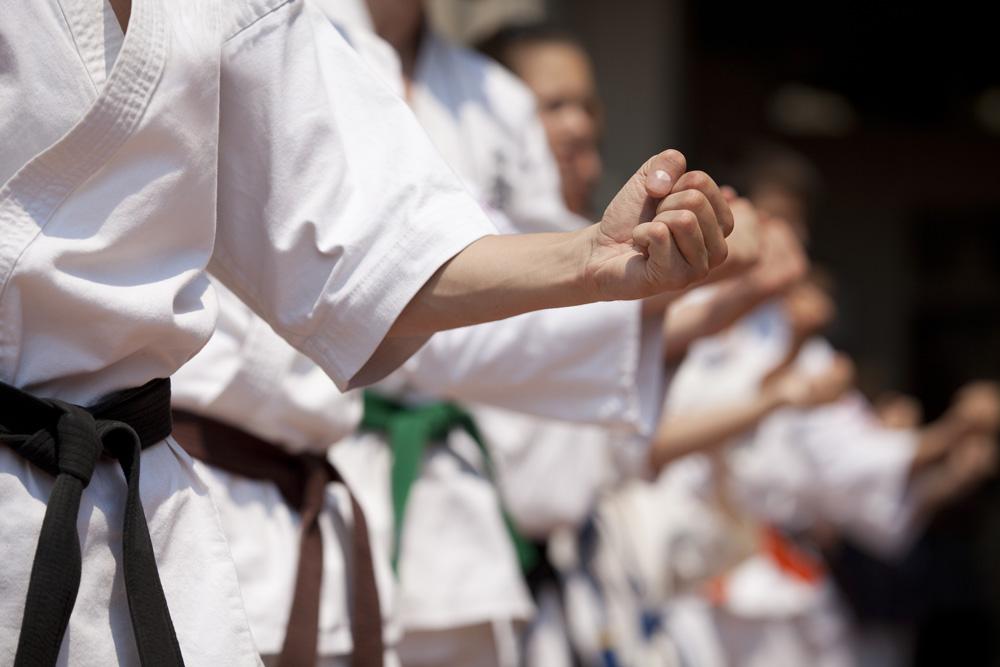 martial arts construction